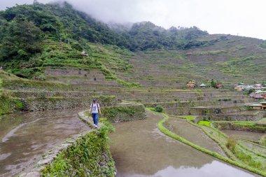 Dec 31,2017 tourist walking at  Batad rice terrace  in Banaue