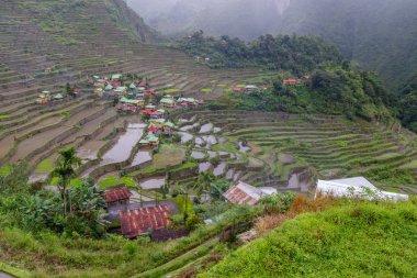 beautiful landscape  Batad rice terrace  in Banaue,