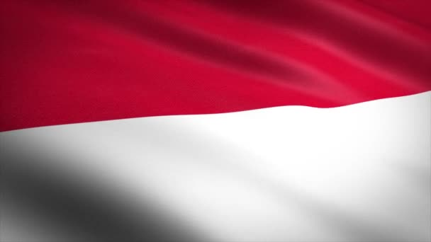 Flag of Indonesia. Waving flag with highly detailed fabric texture seamless loopable video. Seamless loop with highly detailed fabric texture. Loop ready in 4K resolution