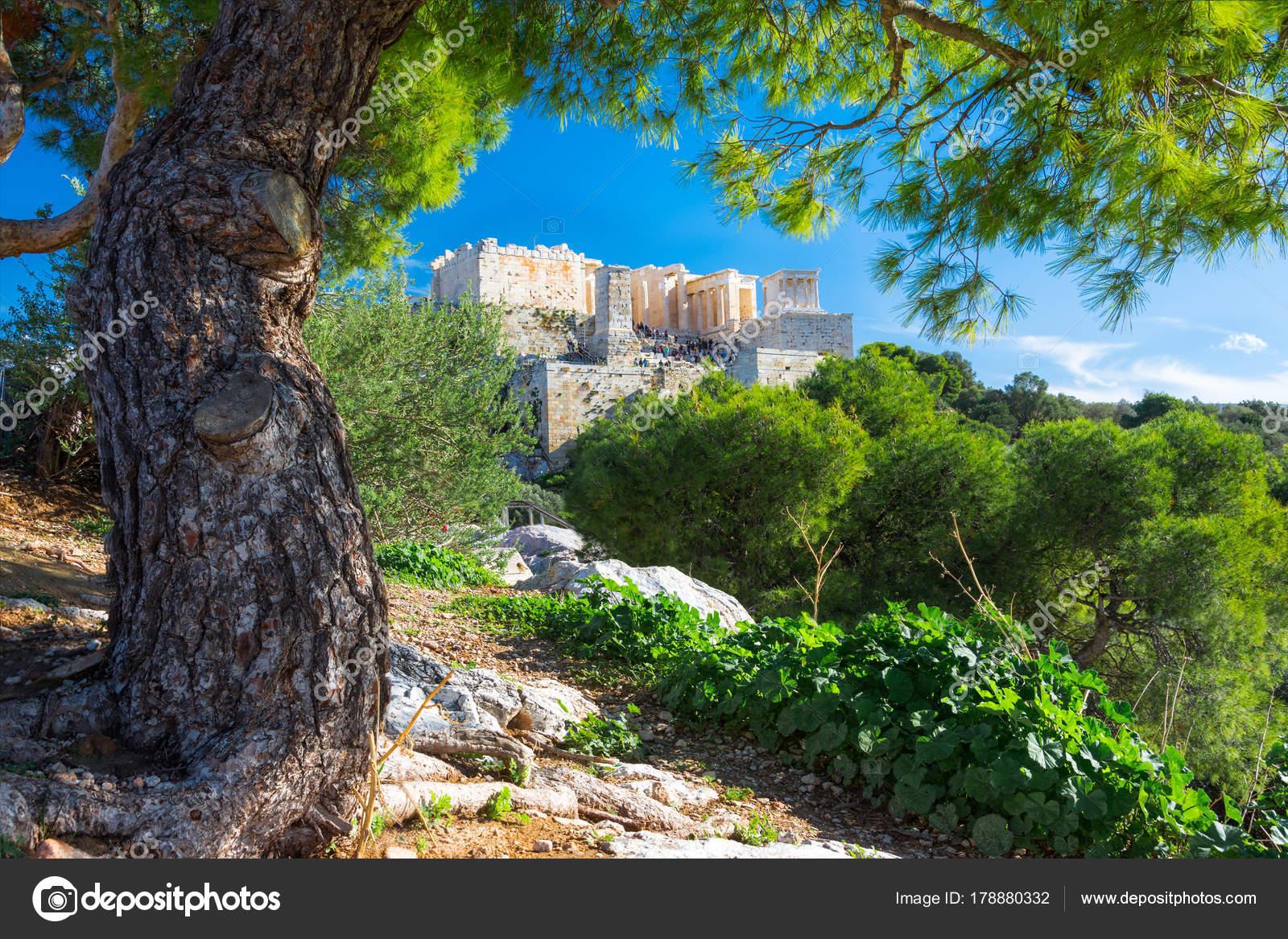 Acropolis Parthenon View Frame Green Plants Trees Athens Greece ...