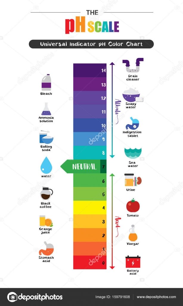 Universal Indicator Ph Color Chart Image collections - Free Any ... for Ph Scale Universal Indicator  51ane