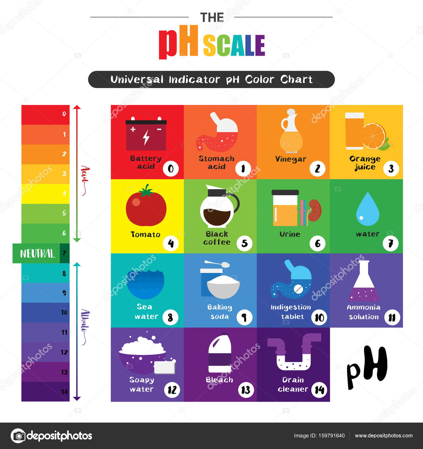 The ph scale universal indicator ph color chart diagram stock the ph scale universal indicator ph color chart diagram stock vector 159791640 nvjuhfo Choice Image
