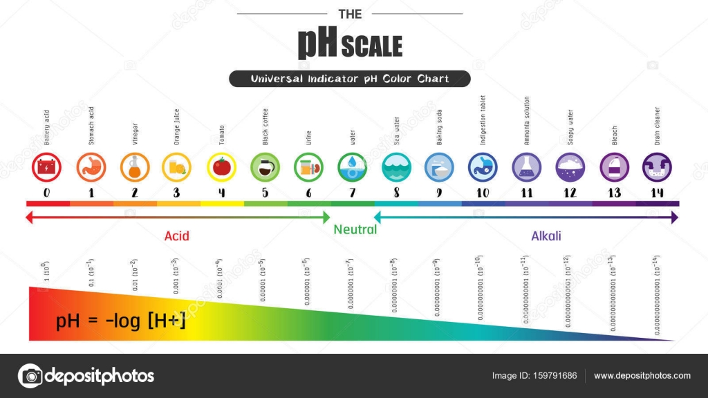 The Ph Scale Universal Indicator Ph Color Chart Diagram Stock