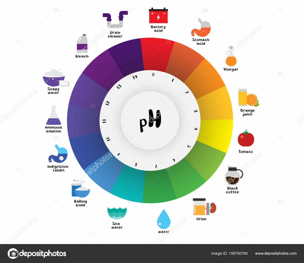 The pH scale Universal Indicator pH Color Chart diagram — Stock ... for Ph Scale Universal Indicator  61obs