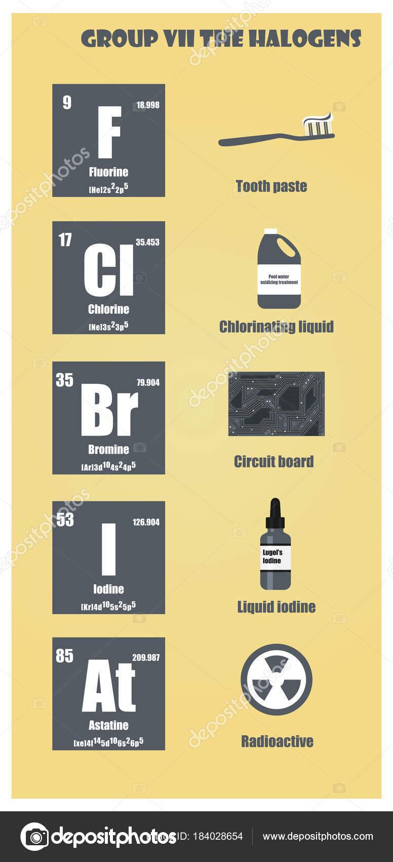Tabla periodica de los elementos del grupo vii los halgenos tabla periodica de los elementos del grupo vii los halgenos vector de stock urtaz Image collections