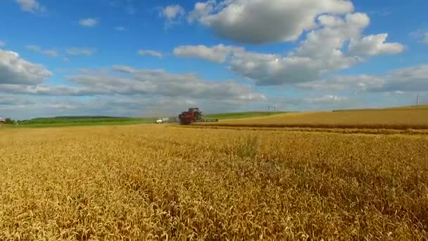 Aerial view of combine harvester on wheat field