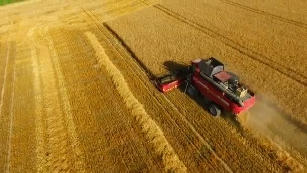 Letecký pohled na kombajn na pšeničné pole