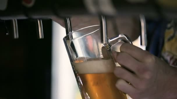 Barman nalil pivo v hospodě