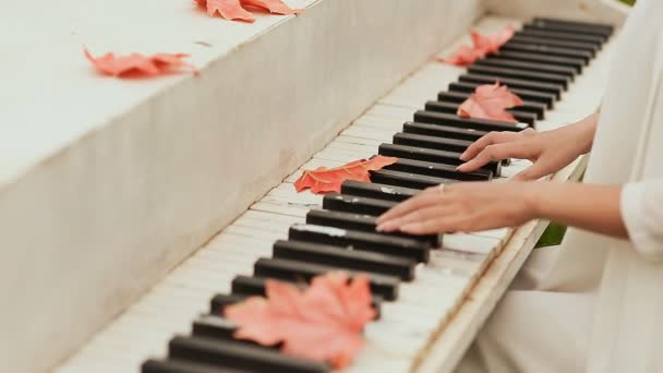 Girls hands on the keyboard of the piano. Maple leaves scattered on the keys.