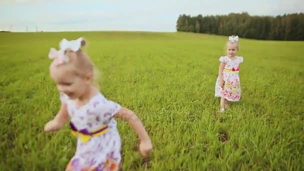 Šťastné děti dvojčata pobíhají smát a hrát na louce v létě