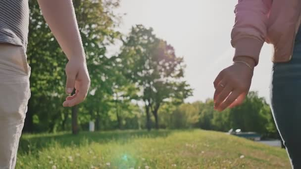 Romantic couple in a green summer park. They take each others hand in the rays of sunlight. Close-up.
