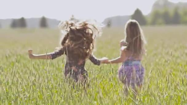 Девушки в поле видео