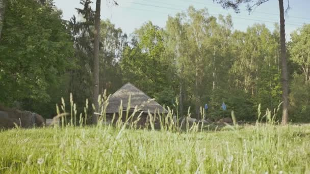 Obec je na okraji zeleného lesa. Venkovská krajina. Země chýše. Venkov. Léto
