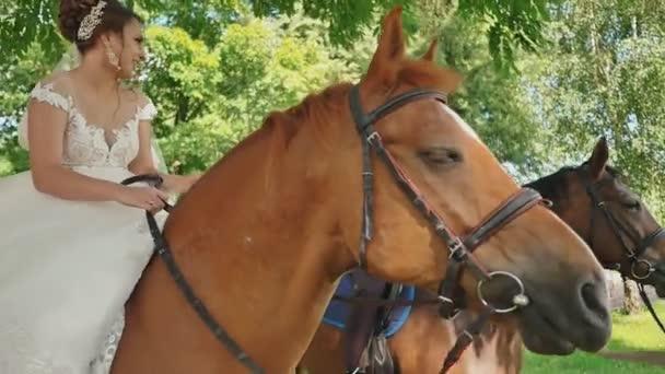 A menyasszony és a vőlegény az esküvő napján a gyönyörű lovak, egy gyönyörű zöld Park ül. Édeskettes.