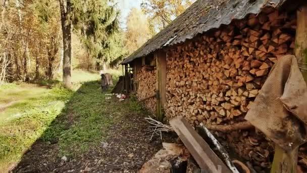 Fából készült pajta a faluban. A csűr fala tele van halom aprított tűzifa. Őszi időben. Lövés-ban jelet ad-val elektronikus stabilizációs.