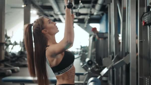 1d7f97ada4ede Sexy athletic sport girl with perfect fitness body doing workout hard  training with bar on incline bench in the gym, professional athlete muscle  fit serious ...