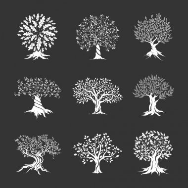 Beautiful oak trees silhouette set isolated on dark background. Web infographic modern vector sign. Premium quality illustration logo design concept. stock vector