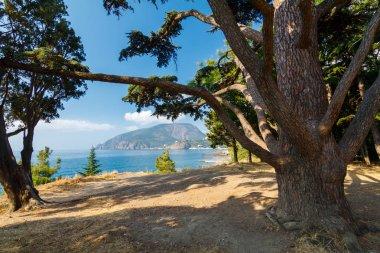 view of the Ayu-Dag mountain/ view of the Ayu-Dag mountain, Crimea