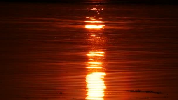 Ranní slunce odraz v čisté vodě