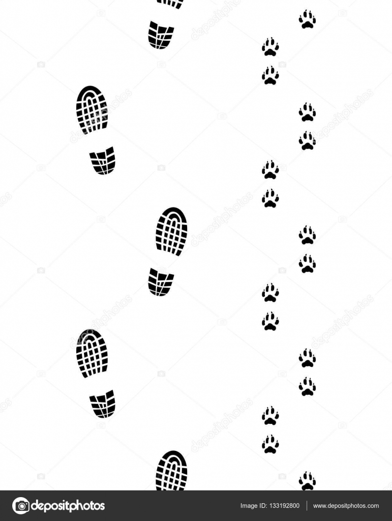 Stock Illustration Human Feet And Dog Paws on 5 Inches In Feet