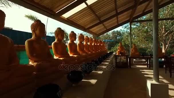 Mnoho soch Buddhy v chrámu
