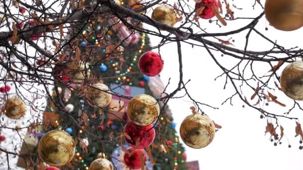 Glossy bright red and golden baubles decorating trees outside in front of big Christmas tree. Close up