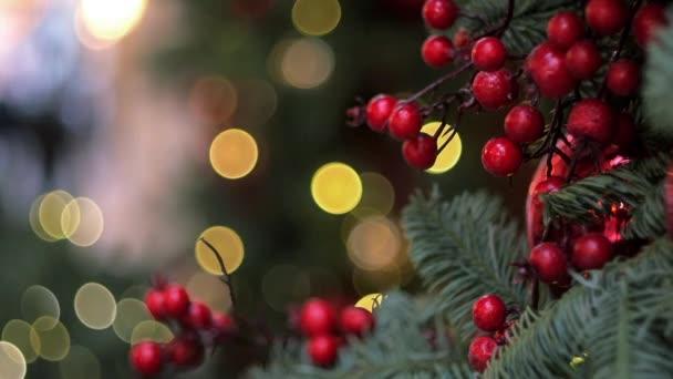 Vánoční dekorace červené bobule na větve stromů jedle a jiskřivé světlo v pozadí v nákupním centru. Naklonit dolů, zblízka