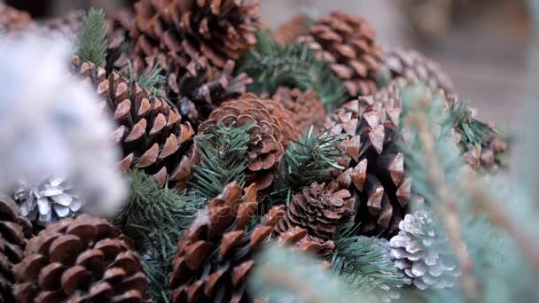 Velké šišky a větve stromů jedle jako vánoční dekorace. Detailní záběr