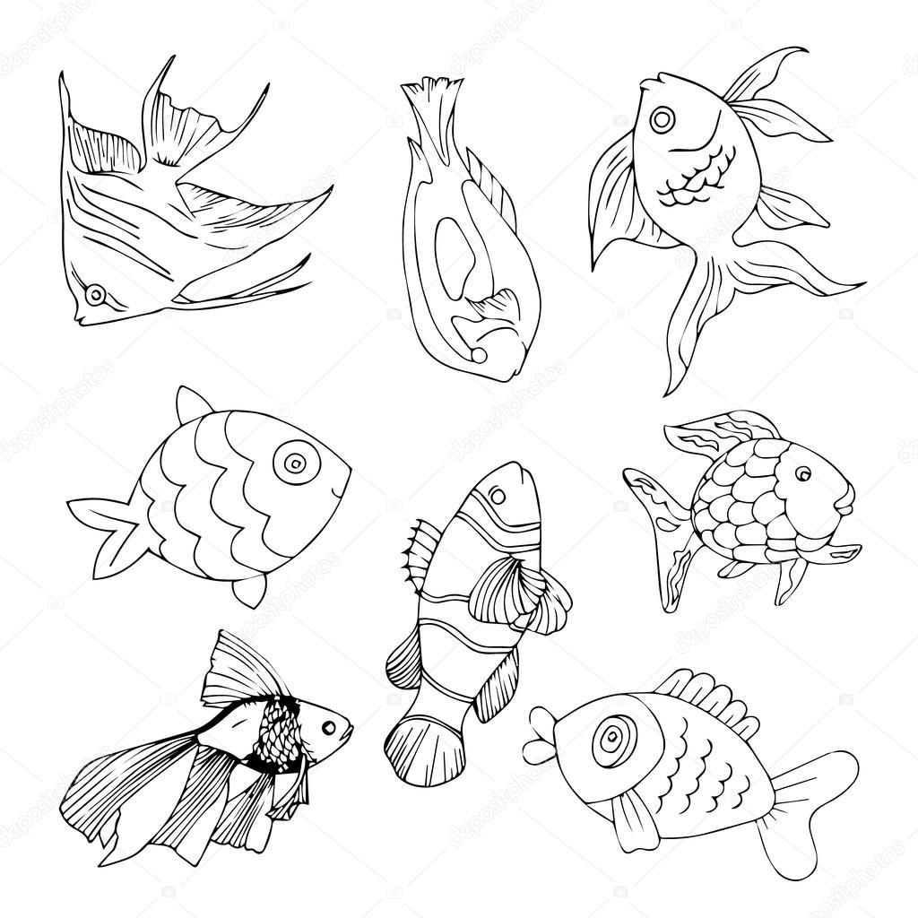 Fish Logo Icon Poster Banner Set Vector Illustration Cartoon Ocean Collection Art Sea