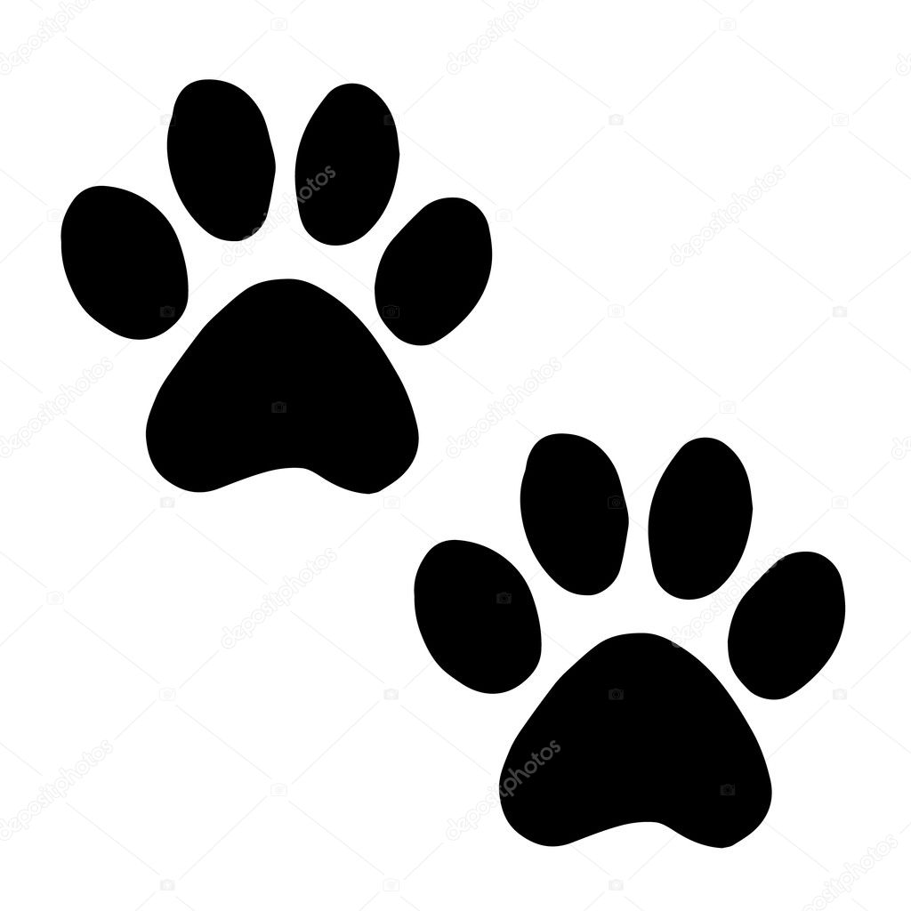Trail cats. Abstract animal footprint vector background ...