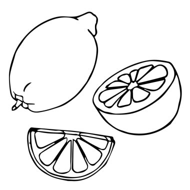 Lemon set. Lemons, four views. Fresh, natural lemons: whole, half, slice, wedge. Fresh lemon and lemon slice. Vector illustration lemon. Decorative ornamental lemon. Vector abstract lemon illustration. Lemon decoration. Lemon cartoon. Lemon design.