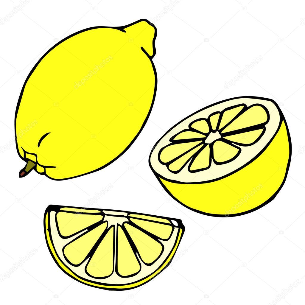 lemon set lemons four views fresh natural lemons whole half rh depositphotos com cartoon monster image cartoon monster image