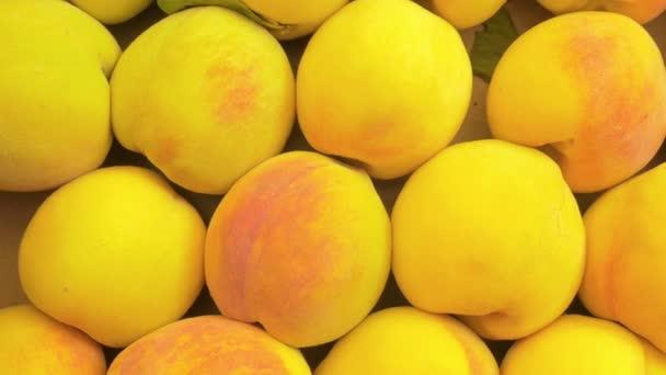 sok sárga őszibarack ki vannak téve a piaci