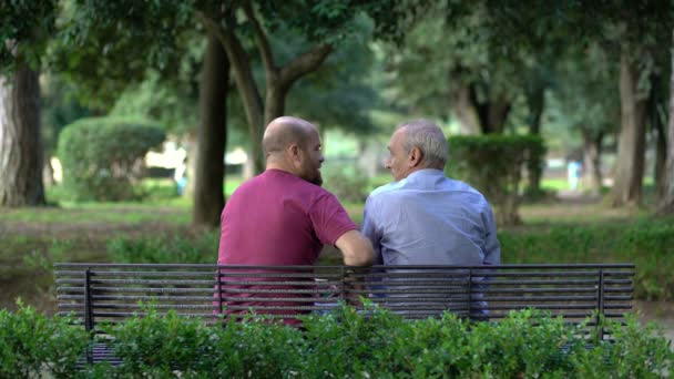 Father And Son On A Bench In A Park Talking And Comparing Video By C Videodream Stock Footage 127538676