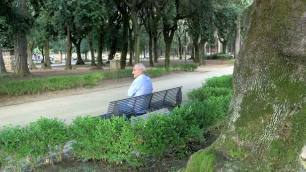 Old Man Alone On A Bench In A Park Stock Video C Videodream 128555402