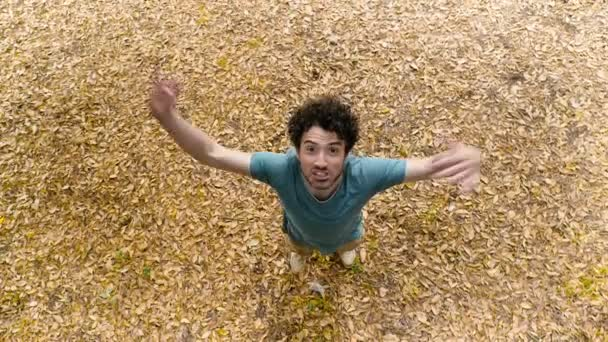 boldog, gondtalan, fiatal férfi-egy fa alatt megnyílik a karját