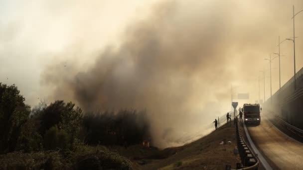 Letní požár v lese