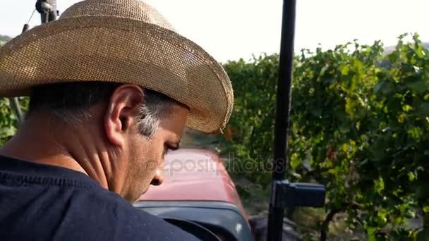 Landwirt mit Traktor im Weinberg