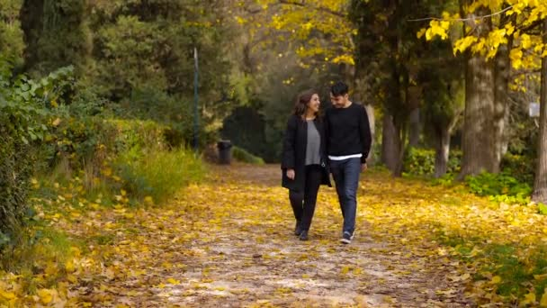 attractive lovers walking in the park in fall day- slow motion