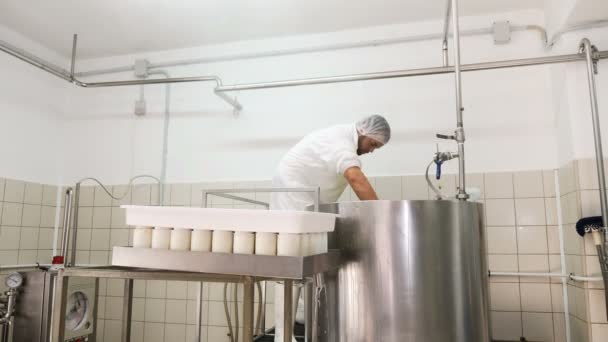 operator working in cheese factory-Diary  Cheese production