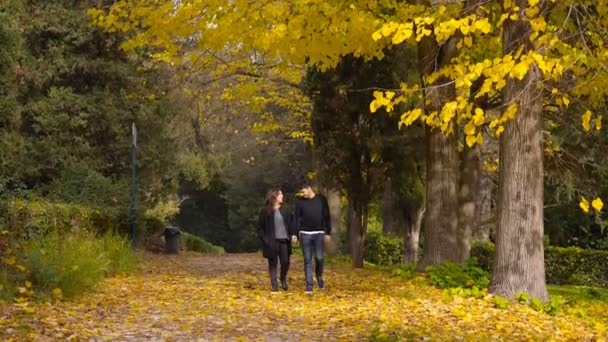 portrait of romantic  young couple walking in the park on a warm autumn day