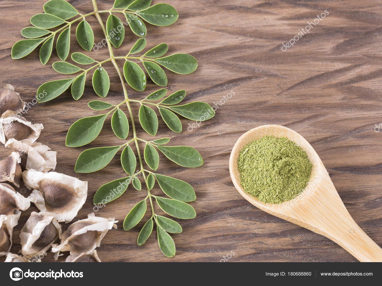 Frische Blatter Pulver Und Moringa Samen Moringa Oleifera