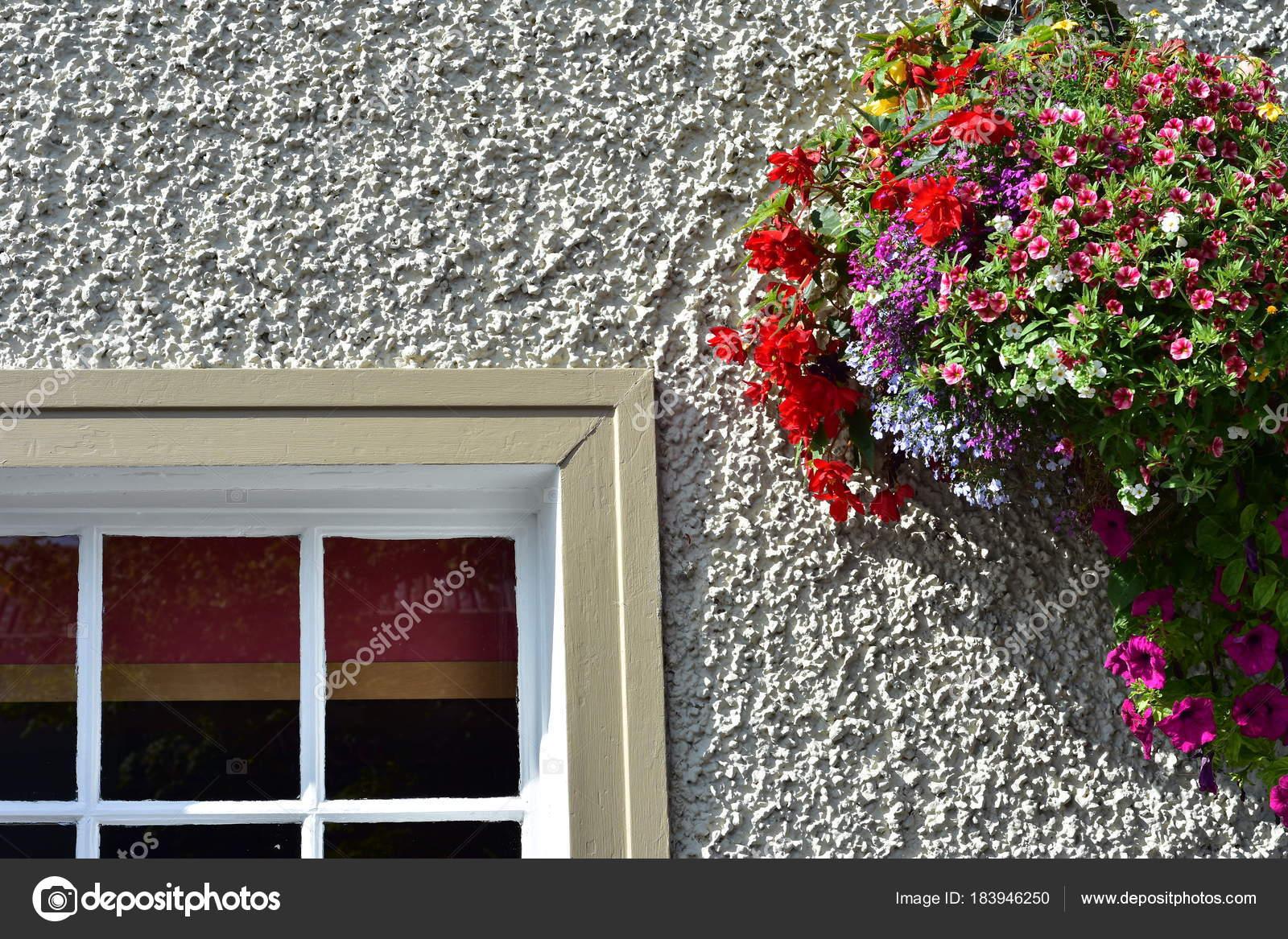 Flores Colores Colgando Pared Exterior Blanca Neta Marco Madera Del ...