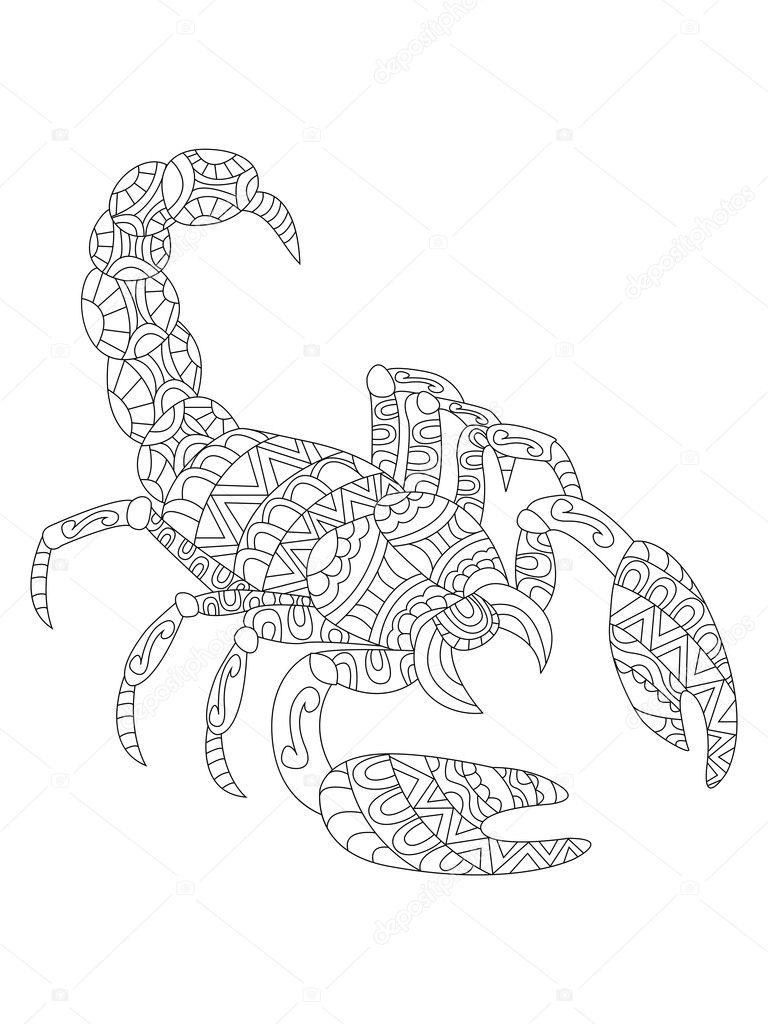 Vector De Escorpión Para Colorear Para Adultos Archivo
