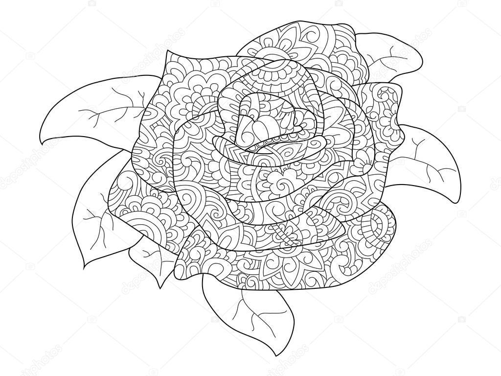vector de flor color de rosa para colorear para adultos — Archivo ...
