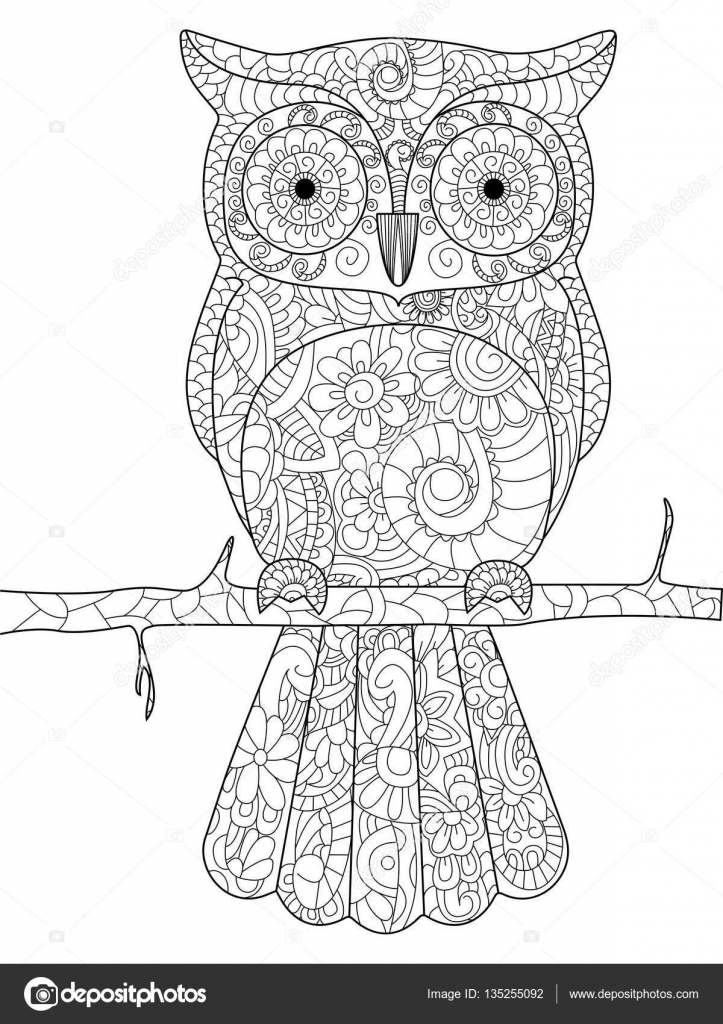 Owl on a branch Coloring book vector for adults — Stock Vector ...