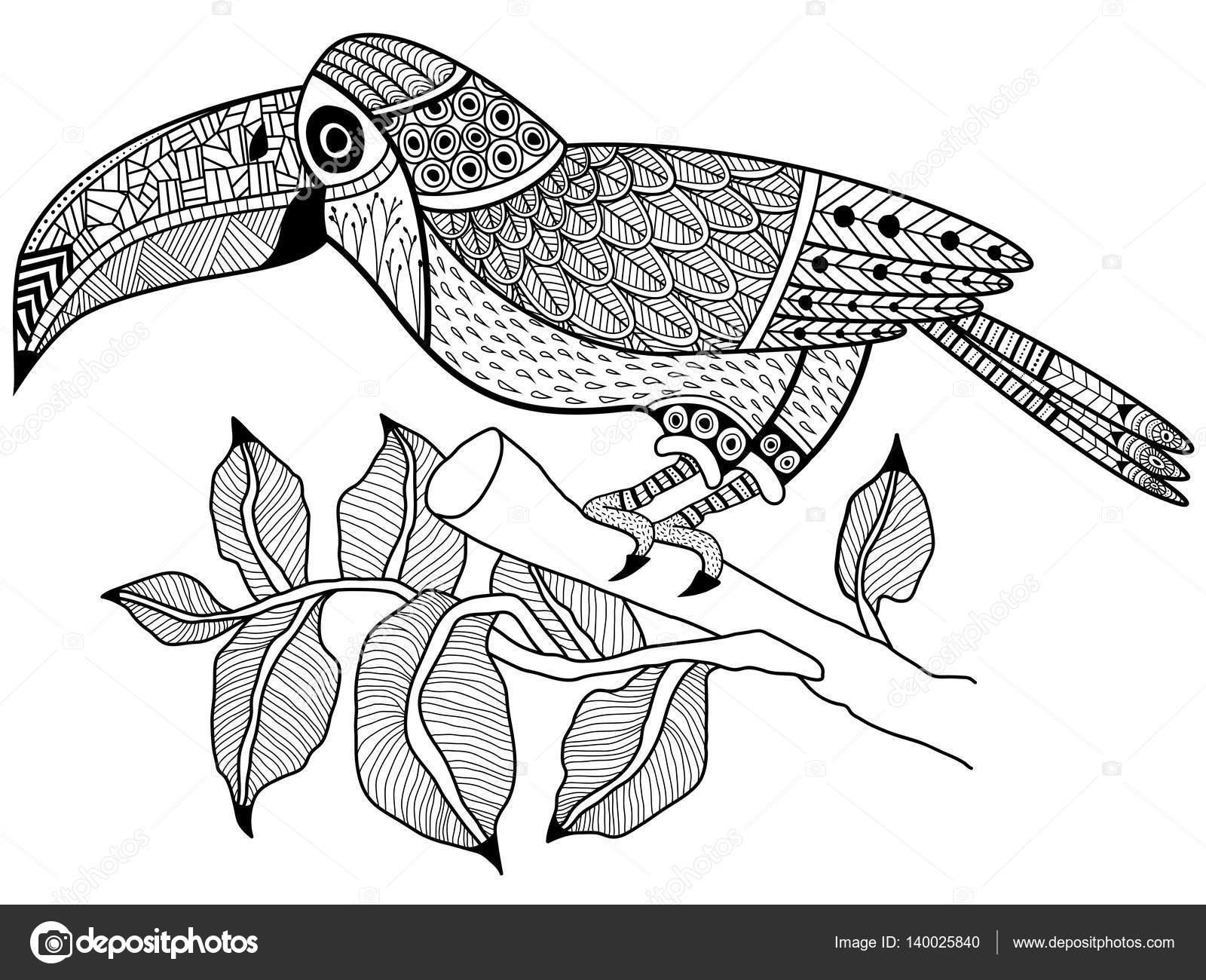Aves de tucán en un vector de libro de rama para colorear para ...