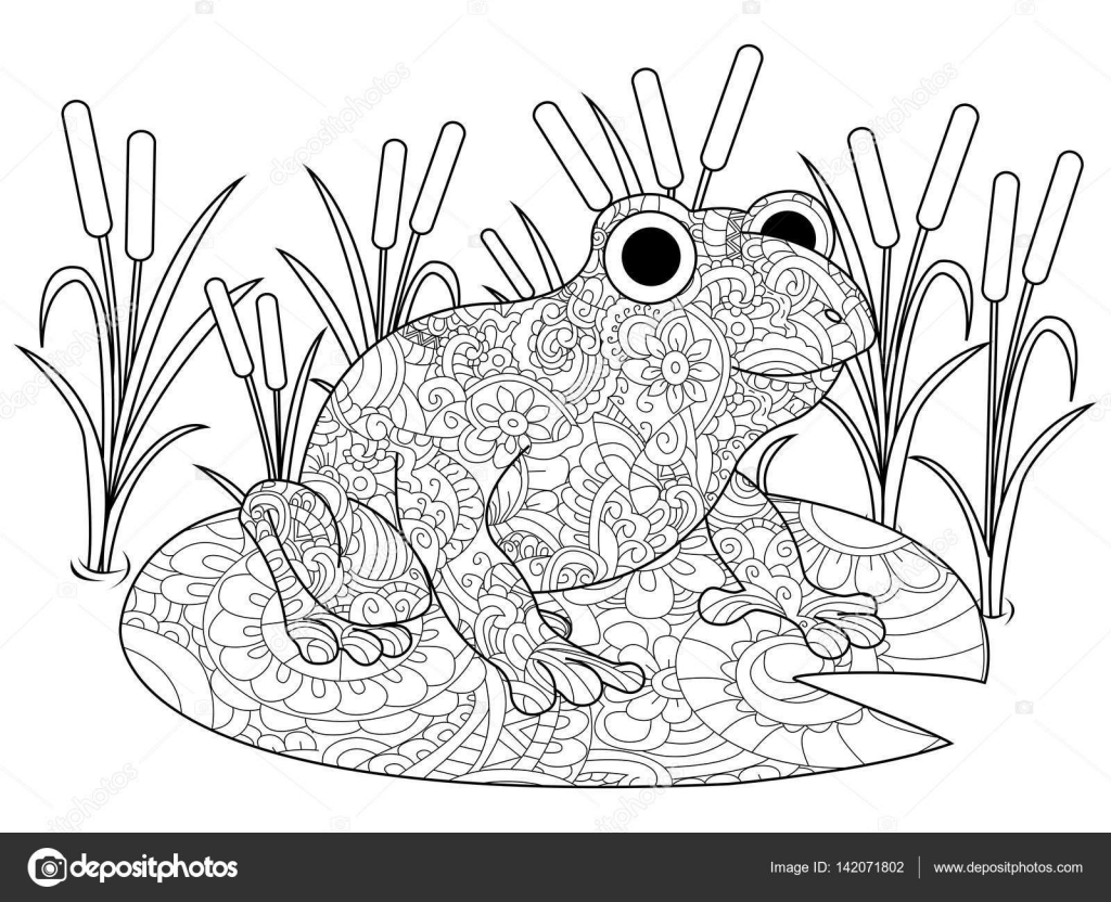 Frosch auf eine Lilie in den Sumpf Malbuch für Erwachsene Vektor ...