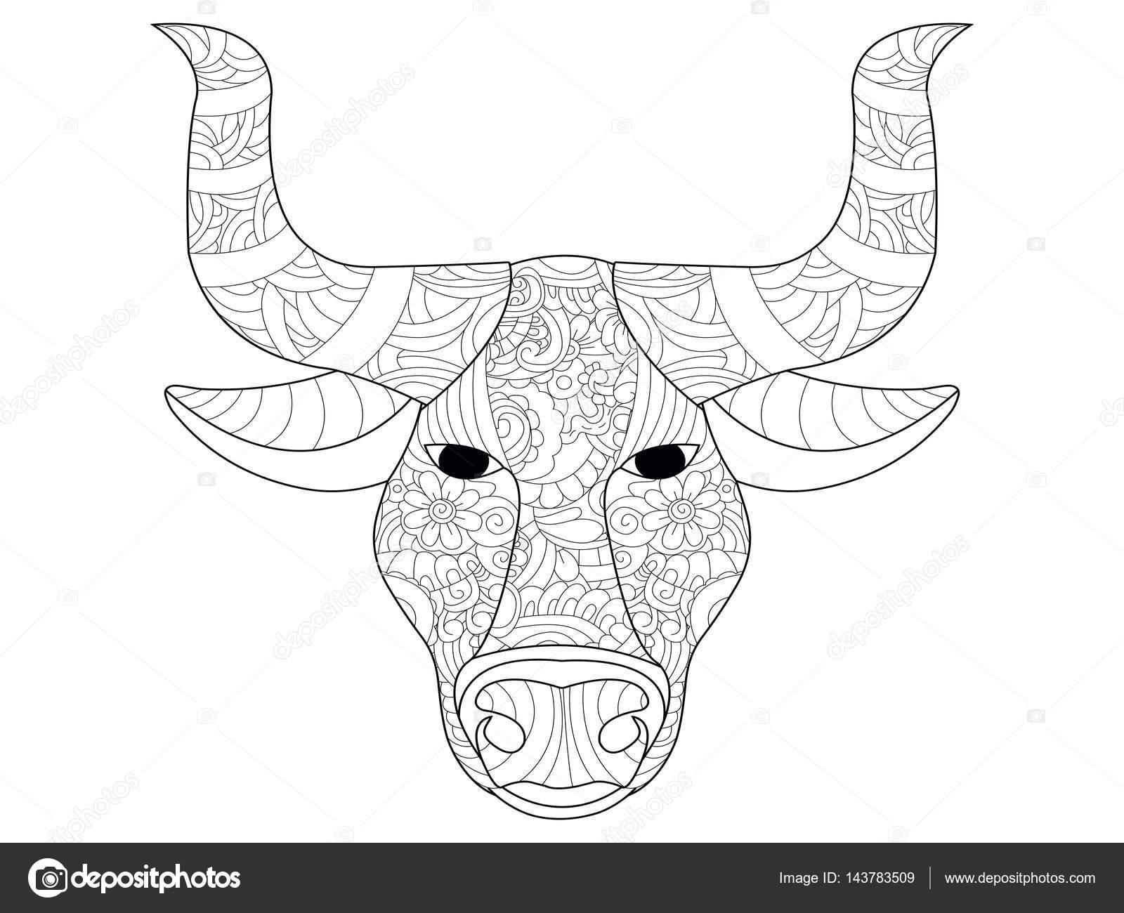 Vecteur De Coloriage Tête De Vache Pour Les Adultes Image