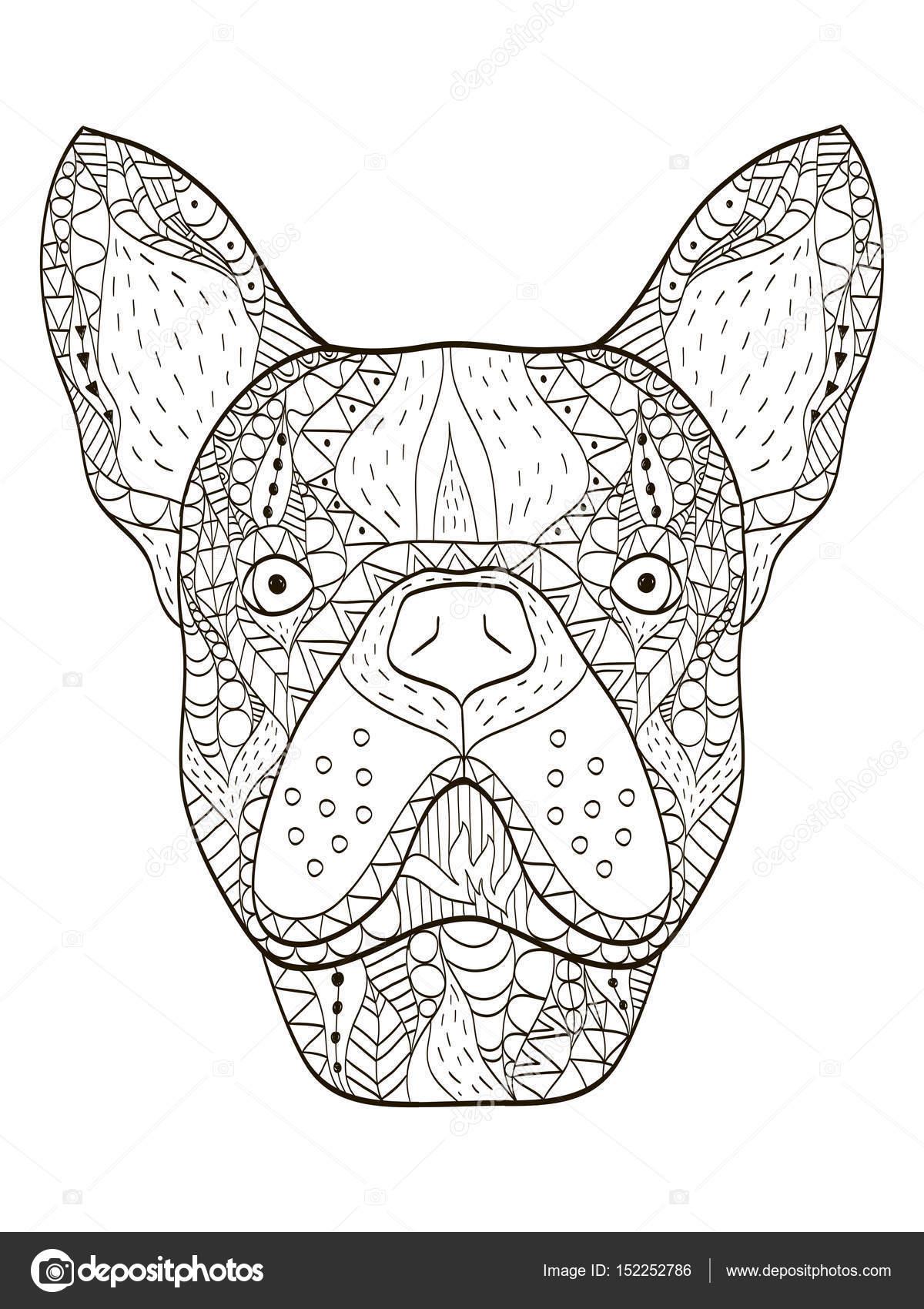 Bulldog Kafa Boyama Kitabı Vektör Yetişkinler Için Stok Vektör